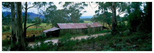 Shearing Shed, Bruny Island